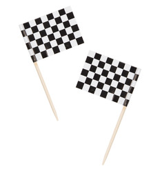 Racing Stripes Prikkers